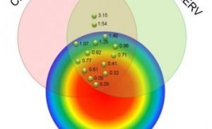 Combined SPECT and cardiac MR imaging can help guide ventricular tachycardia ablation