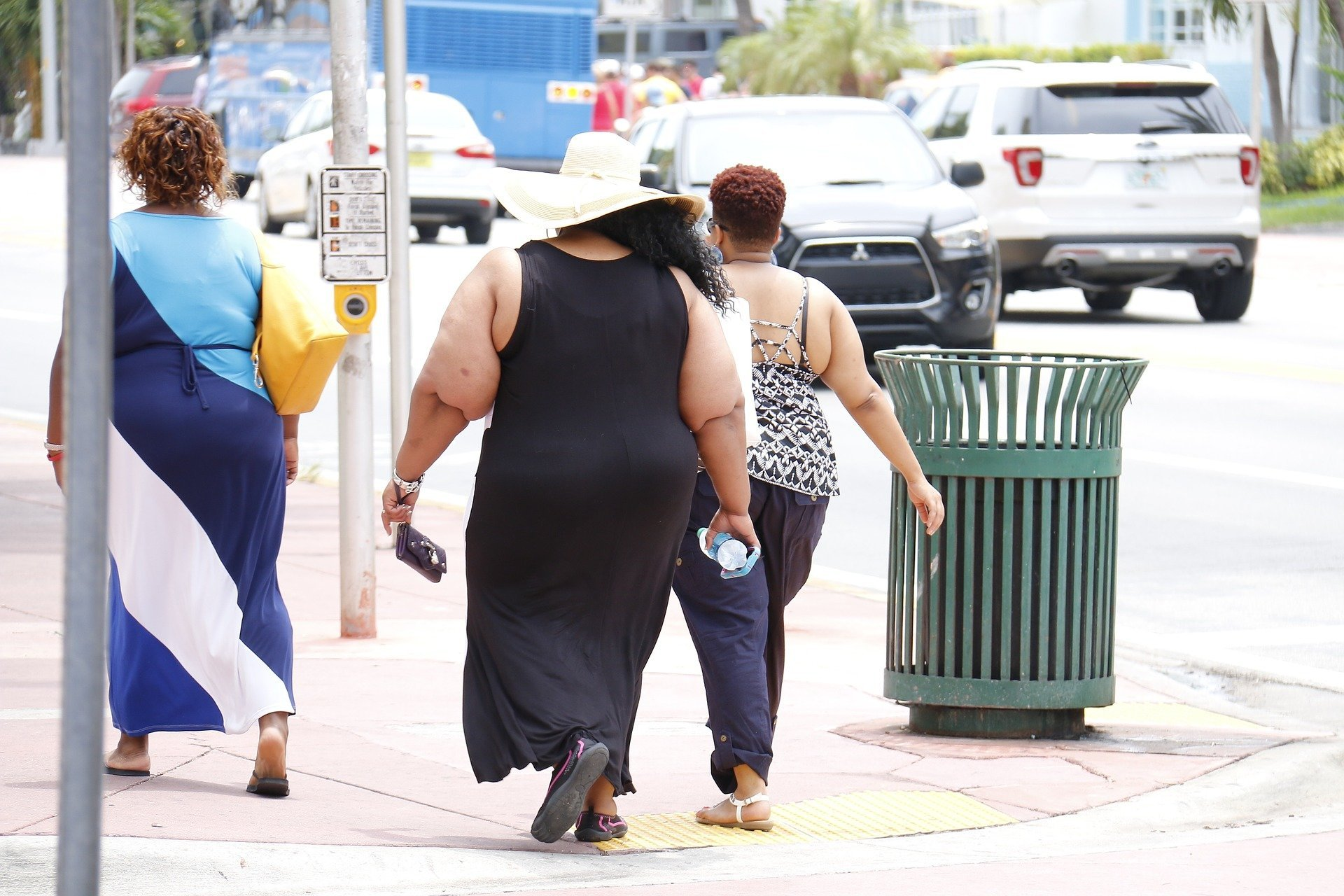 VAT fat may cause pathogenic obesity