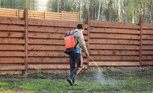'Safe' herbicide in Australian water affects male fertility