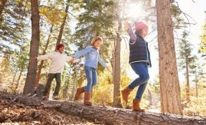 Children Who Grow Up Surrounded by Green Space Could Have Lower Risk of Psychiatric Disorders