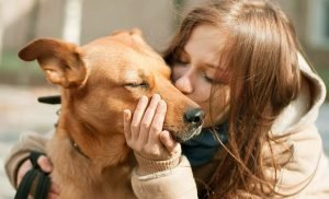 Owners are warned their PETS are causing antibiotic resistance