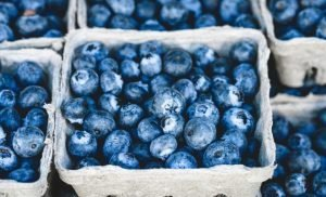 Eating blueberries every day improves heart health