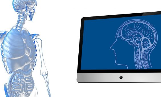 Digital twin for personalized therapies