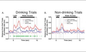 Impaired brain activity in rats with family history of alcohol abuse