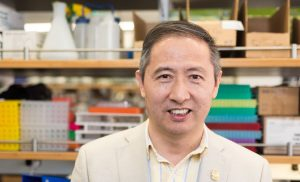 Study identifies protein responsible for mechanism behind bone loss