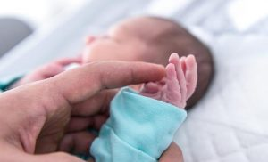 Several cases of babies with malformations: the Ministry gives the all-clear
