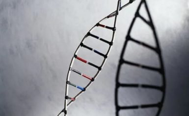 Multigene testing for all breast cancer patients cost-effective