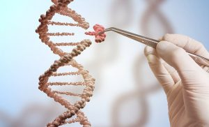 Controversial CRISPR gene-editing tool could be used to detect viruses
