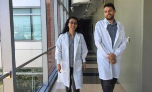At the heart of regeneration: Scientists reveal a new frontier in cardiac research