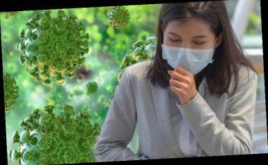 Coronavirus latest warning: Public Health England issues latest statement on deadly virus