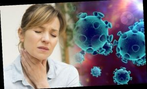 Coronavirus latest: What you can do to prevent the deadly virus spreading