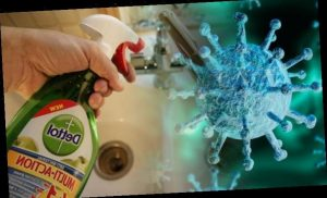 Coronavirus latest: Can Dettol kill the deadly Wuhan coronavirus now confirmed in the UK?