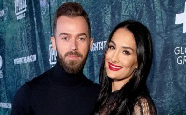 LOL! Pregnant Nikki Bella Shares Artem's Reaction to Her Outgrowing Bras