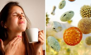 Hay fever symptoms: How the condition affects your throat – when symptoms could be COVID19