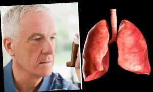 Asthma in winter: Five tips to keep the inflammatory condition under control