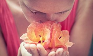 How 'smell training' could help overcome post-viral smell distortions