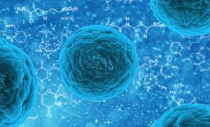 Protein twist and squeeze confers cancer drug resistance