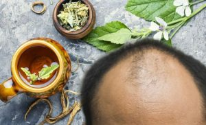 Hair loss treatment: Marshmallow roots mucilage properties could help increase hair growth