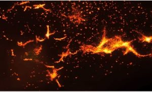 Photoactivated Localization Microscopy in Research