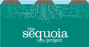 Sequoia Project seeks COVID-19 lessons learned with new interoperability workgroup