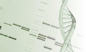 Functions of Junk DNA