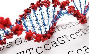 Primary Ciliary Dyskinesia Genetics