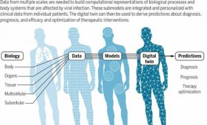 Digital twins could lead to more proactive, personalized medicine, researchers say