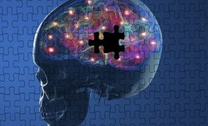 New grants could help protect the environment and create new therapy for Parkinson's