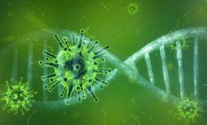 UK trial reinfects volunteers who have had coronavirus