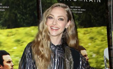 Watch Amanda Seyfried's 7-Month-Old Son Adorably Crash Her Interview