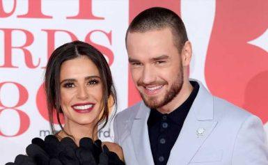 Liam Payne and More Celebs' Honest Coparenting Quotes Amid Quarantine