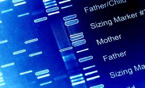 Study provides new insights into the origins of genetic disorders