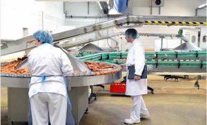 Irish meat processing plant COVID-19 outbreak: a retrospective study